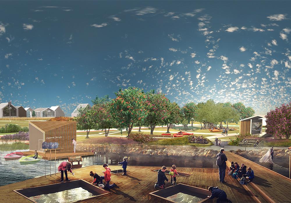 бакалавриат по дизайну города